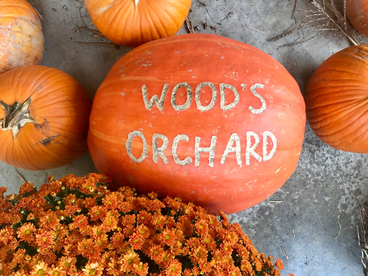 Wood's Orchard